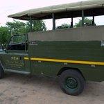 Safari-Jeep für Wildbeobachtungsfahrten