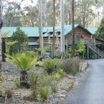 Reception and main lodge