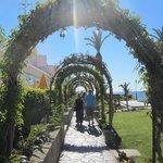 nice gardening - nice arches