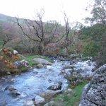 Walking near Aber Falls