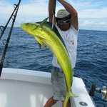 Christian Gaffin the Mahi