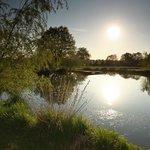 L'étang avec du soleil