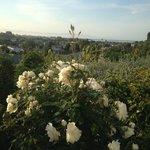 De tuin en het uitzicht