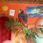 Las Abrazos Mayan Restaurant