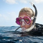 We run local, interstate and overseas dive trips