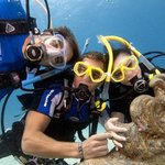 Diving can be fun and exciting
