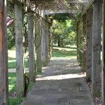 Covered trellis walkway into front of winery