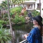 Grand Wailea - Jardins