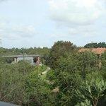 Apt 634 (Block D) - view from living area over Parramatta River towards city