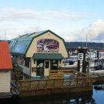 Campbell river whale watching office