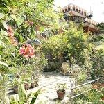 Oasis on the outskirts of Kathmandu