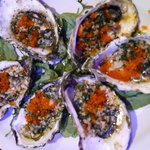 fresh and perfectly grilled oysters