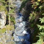 Englishman River Falls III