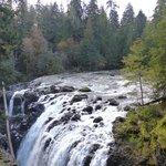 Englishman River Falls IV
