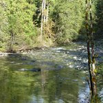 Englishman River Falls V
