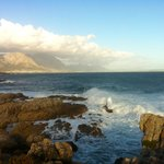 view of Hermanus from the cliff path