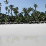 Beach like paradise