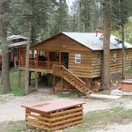 Bristle Pine Cabin