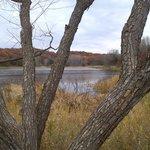 Ravine Regional Park November 2013