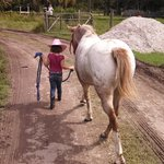 little cowgirls best friend