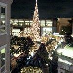 The splendor of Holiday lights...