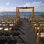 Great wedding venue @ the Naturalist