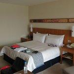 Big bed for big sleep!!