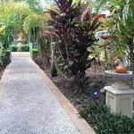 Gardens near the pool