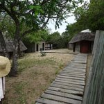 The Camp in Maputoland