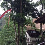 Restaurant hanging in the jungle! Fantastic view!