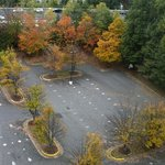 Fall colors at parking from 11th floor room