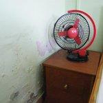 Fan in Room