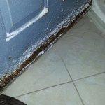 Rusted front door