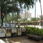 Miracle Mile - Apenas a alguns quarteirões do hotel - Caixas de venda de jornais