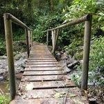 Puente hacia Los Chorros