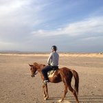 schitterende woestijn