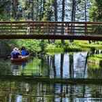 Eldorado National Forest Foto