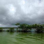 The Bacalar lagoon