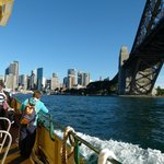 The bridge from Luna Park ferry