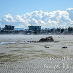 Low tide Parksville - I am way out there!