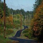 Cushman Trail