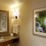 Fireplace suites offer extra large guestroom baths