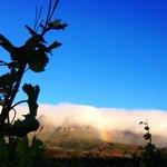 Rainbow's end...