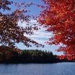 Walden Pond in the autumn