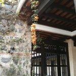Bellas puertas entre los jardines