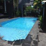 Zwembad/tuin