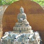 Buda alberca