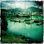 Crescent Harbor - boats that catch the fresh seafood served at Ludvig's