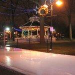 Gage Park Skating Rink