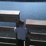 Looking at the lake near the Gazebo